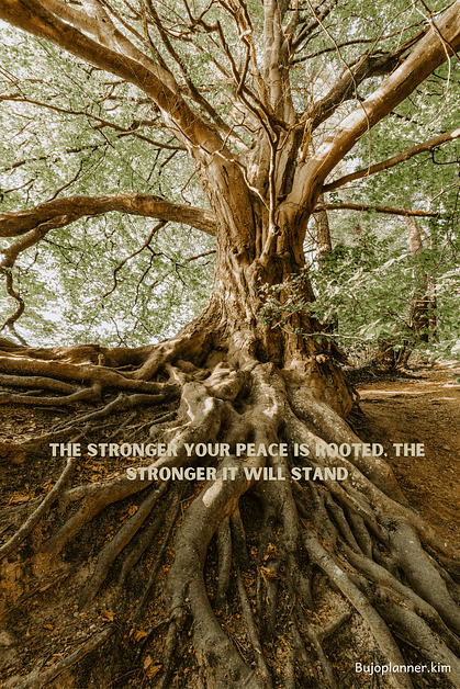 Picture of tree with roots.  Quote says: The stronger your peace is rooted, the stronger it will stand.